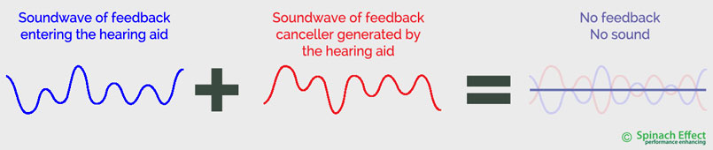 feedback-cancellation-hearing-aids-expert-hearing-perth